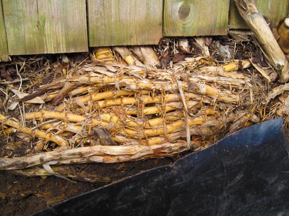 Bamboo Root Removal Garden Design Ideas